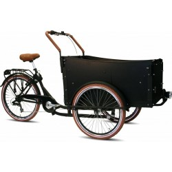 Child cargo trike KidsCab Comfort
