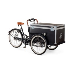 Johnny Loco E-bike Delivery cruiser cargo trike